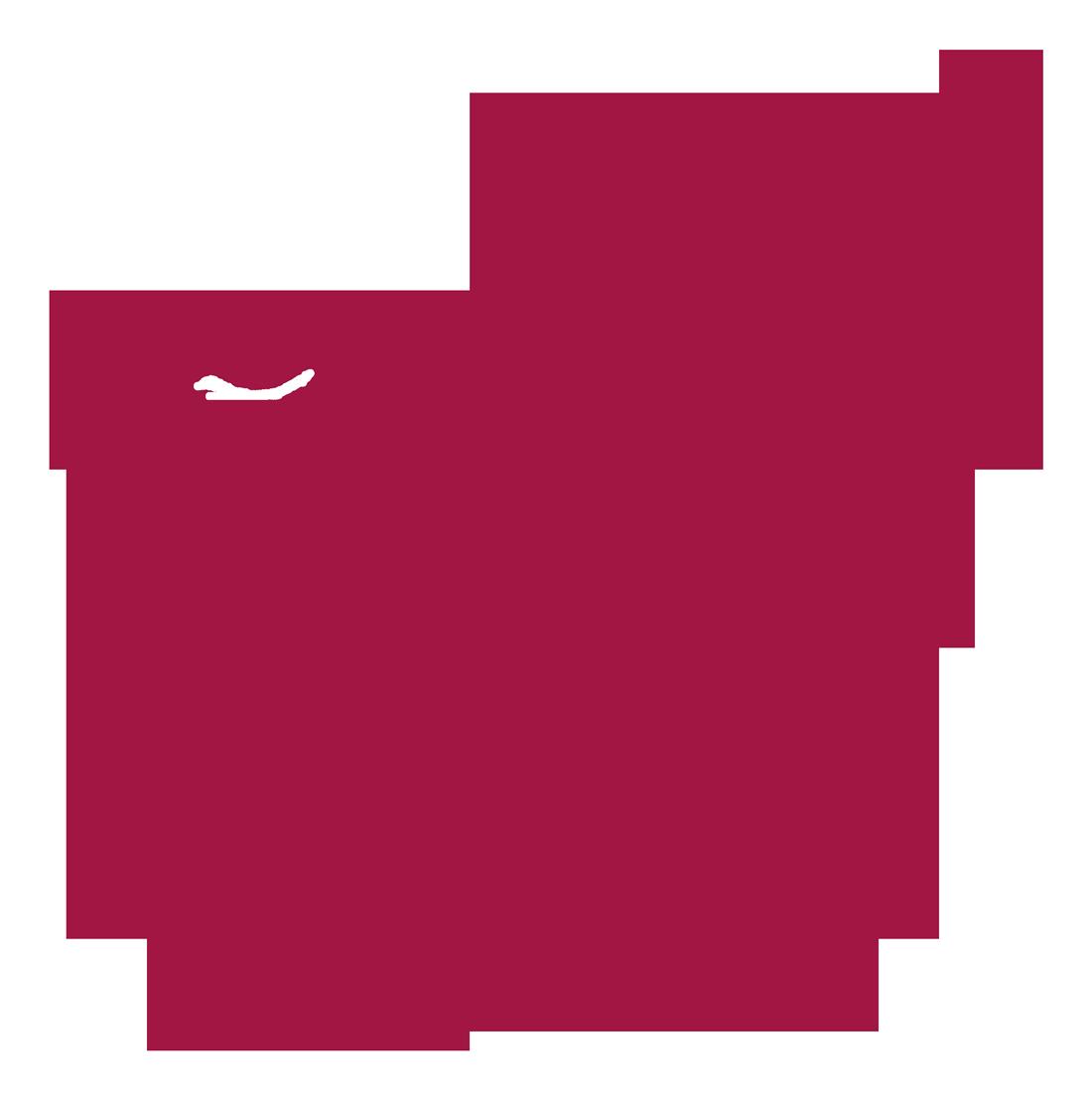 http://www.cpcml.ca/francais/Images2019/RenouveauDemocratique/DroitVoteInformePlum4.png